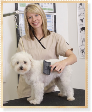 Pet Grooming Services